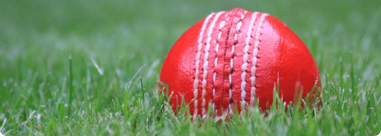 cricket ball png. Forum middot; Fantasy Cricket middot; News